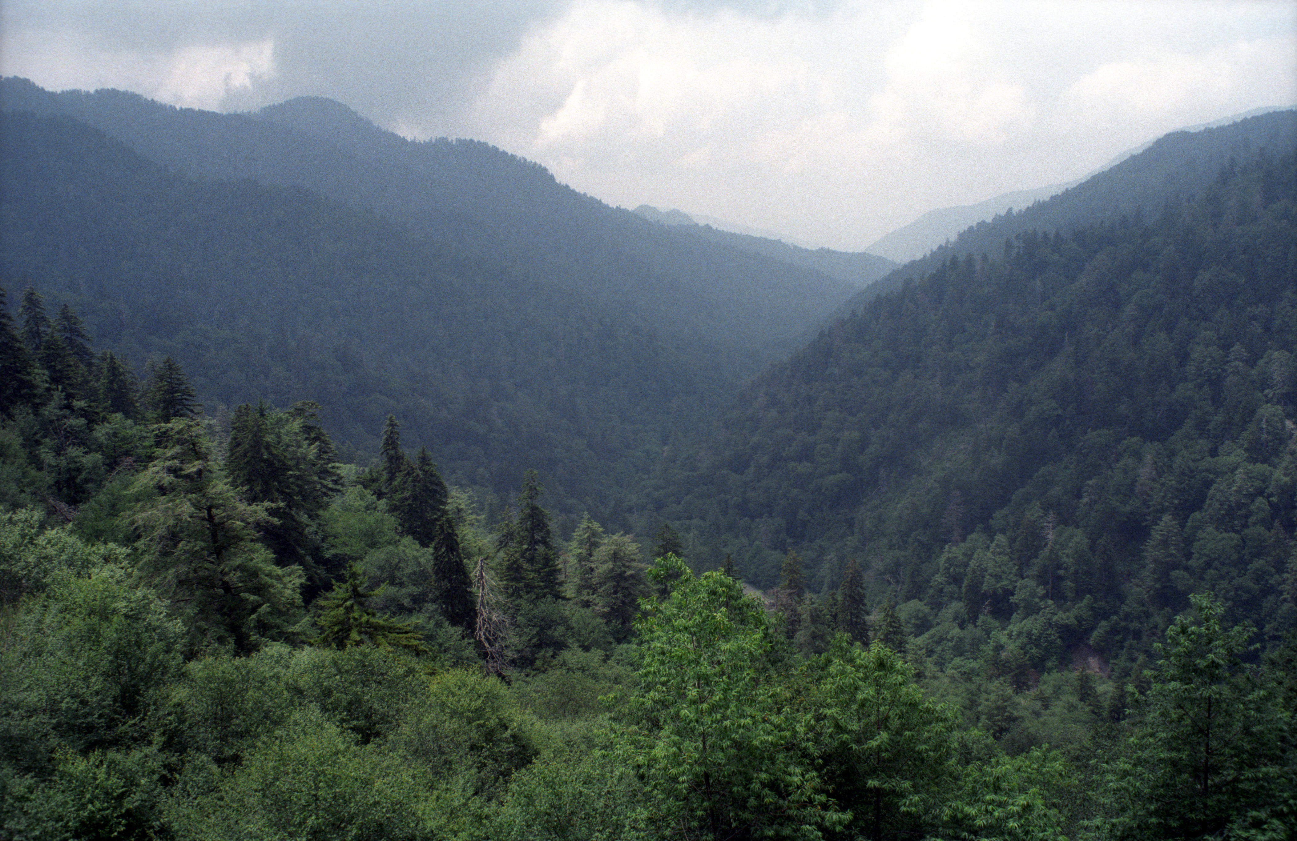 great smokey mountain national park Discover the varied things you can do at great smoky mountains national park download a one-page, quick and easy guide that you can access from anywhere.